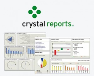 Crystal Reports Software Development