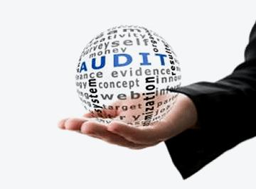 online-audit