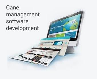 cane-management