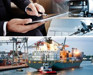 Custom ERP Solution for Logistics