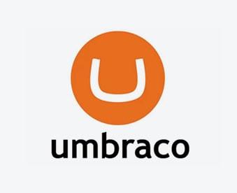 Umbraco CMS Development